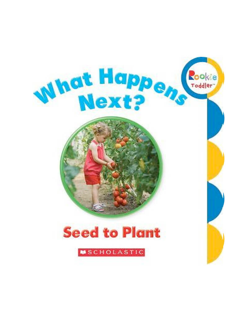 What happens next ? Seed To Plant