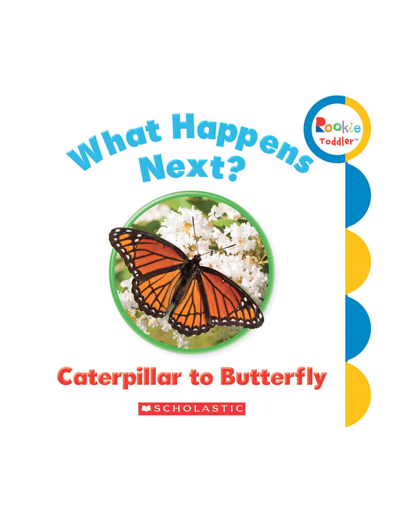 What happens next ? Caterpillar to Butterfly